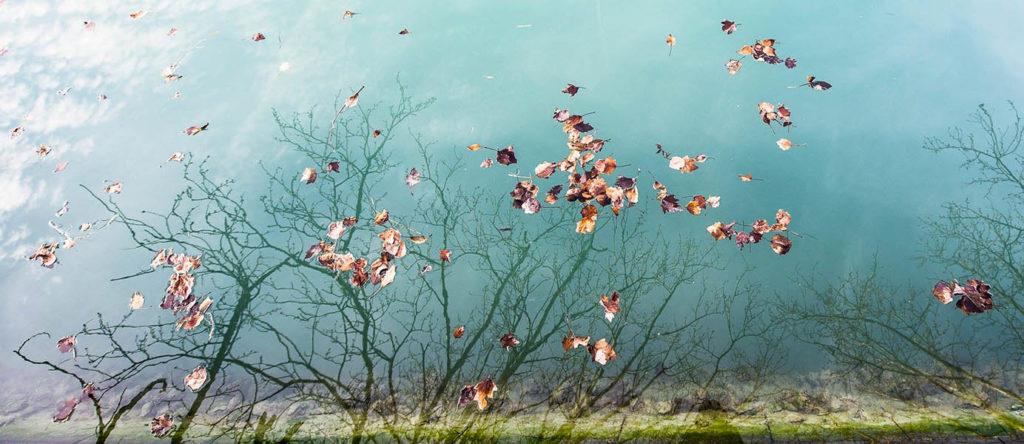 Piero Novello - I colori dell'inverno